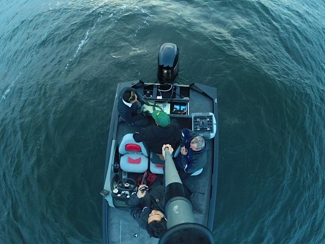 embarcacion de pesca online